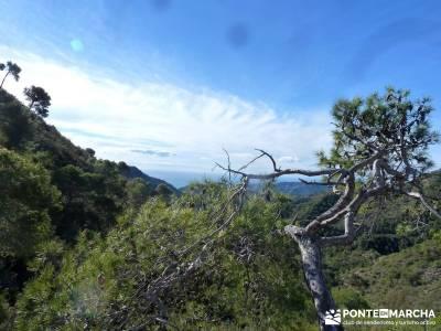 Axarquía- Sierras de Tejeda, Almijara y Alhama; imagenes de senderismo; grupo de montaña madrid